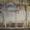 Ремонтно-отделочные работы (штукатурка,  шпаклевка,  обои и т.д.) #1259404