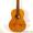 Классическая гитара мастера Николая Игнатенко #1535535
