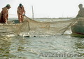Рыба,  Морепродукты,  Икра,  Снеки,  Консервы