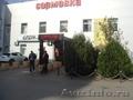 Продам офисные (не жилые) помещения по ул. Сормовской. Собственник. - Изображение #2, Объявление #905922