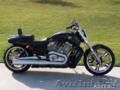 Продам Harley-Davidson Muscle V-ROD 2012 год.