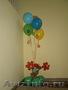 Украшение детских праздников - Изображение #9, Объявление #917976