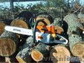 Спил Деревьев!!!!!!, Объявление #1215220