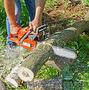 Пилим любой сложности деревья,  обрезаем кусты санитарная обработка.