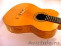 Концертная гитара мастера Николая Игнатенко - Изображение #3, Объявление #1535536