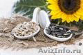 Семена подсолнечника (сорта и гибриды), Объявление #1591026