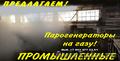 Парогенераторы промышленные купить - Изображение #7, Объявление #1469449