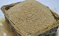 Продаю пшеничную крупу оптом, Объявление #1606994