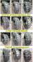 Шины Superguider 10-16,  5 12,  5/80-18 16,  9-24 23,  5-25